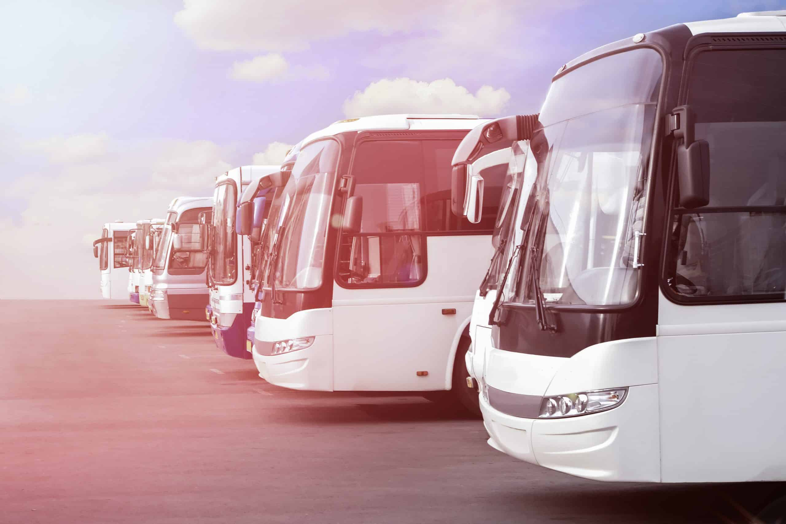 spencer gulf coaches buses scaled