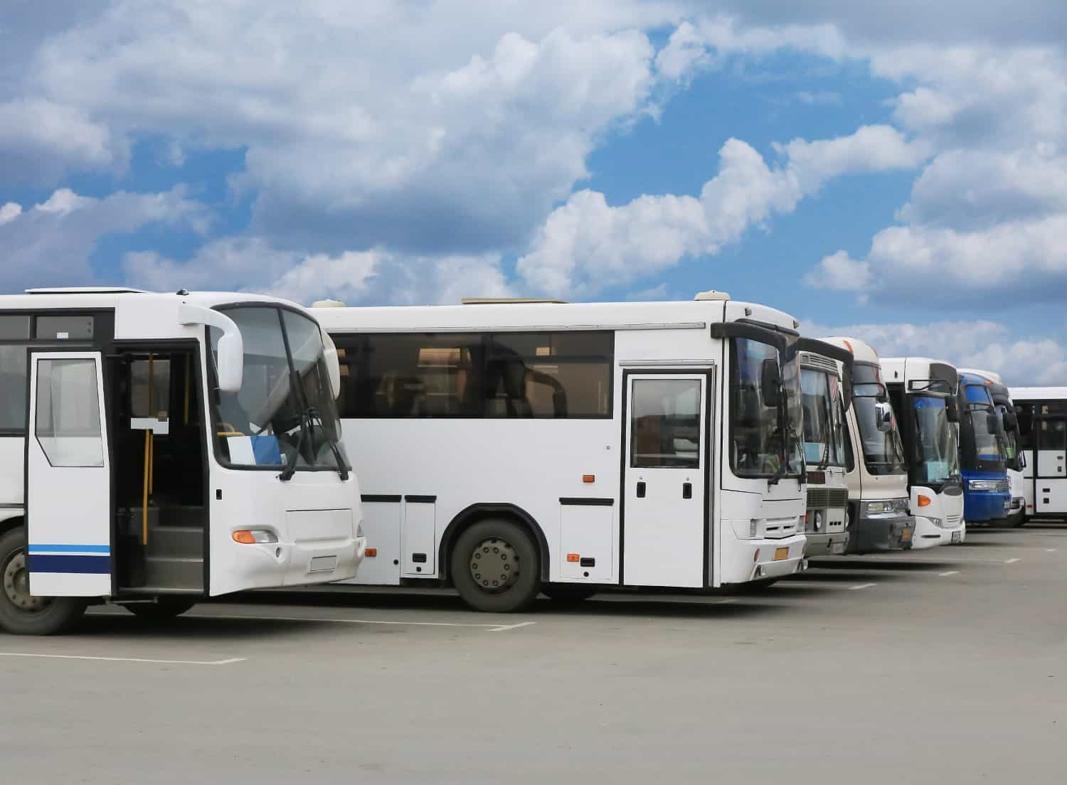 spencer gulf coaches buses